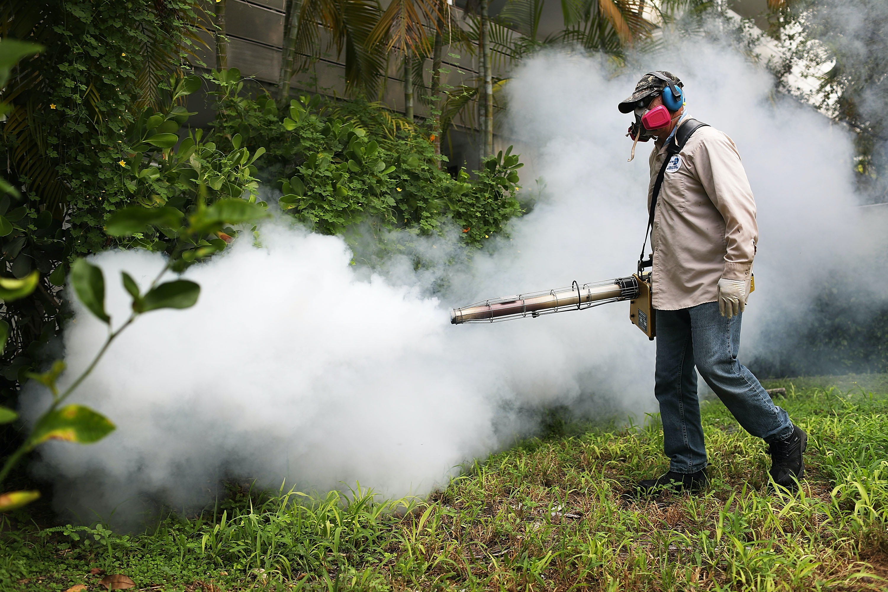 World Health Organization strengthens safe sex guidance when returning from Zika zones