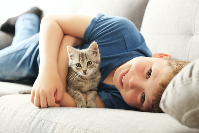 Are Cats Beneficial for Kids?