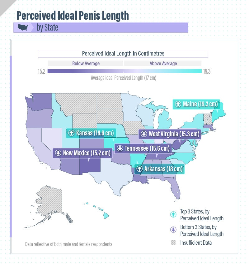 Average lenth of penis