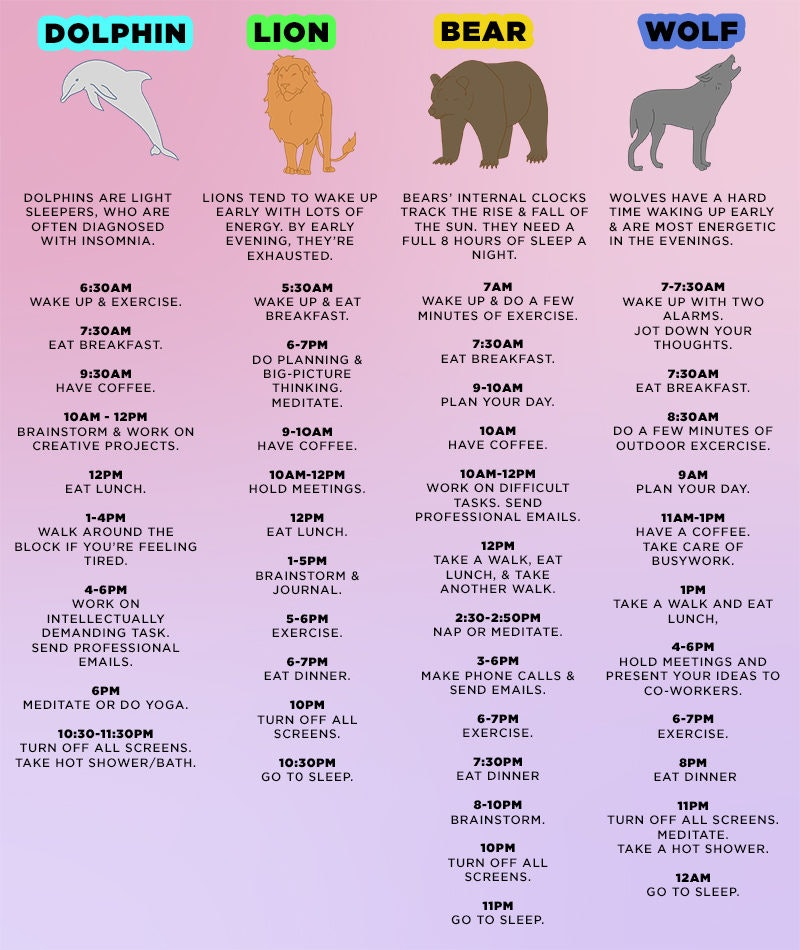 Four animal personality test