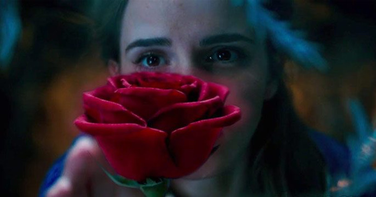 The Beauty And The Beast Rose Exists Irl