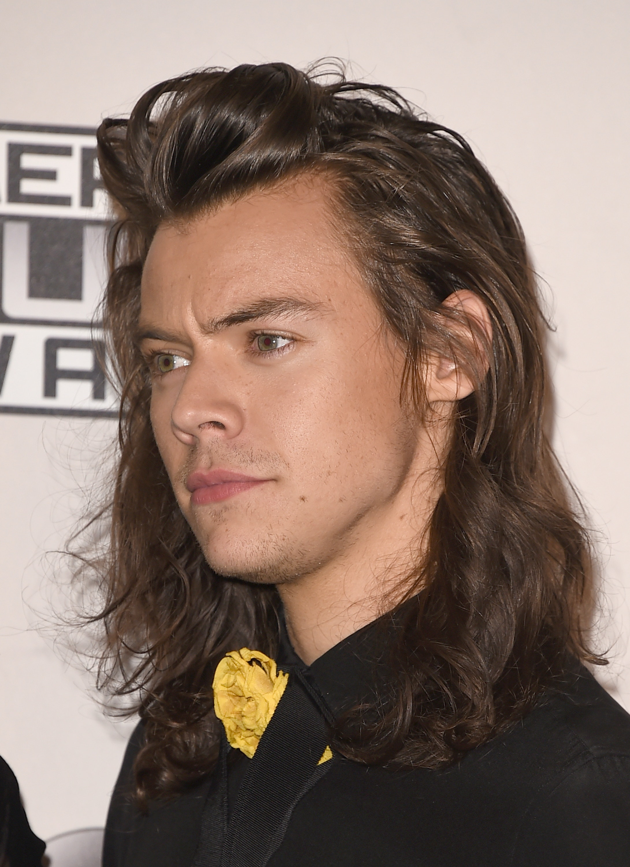 How To Emotionally Prepare For Harry Styles Future Short Haircut