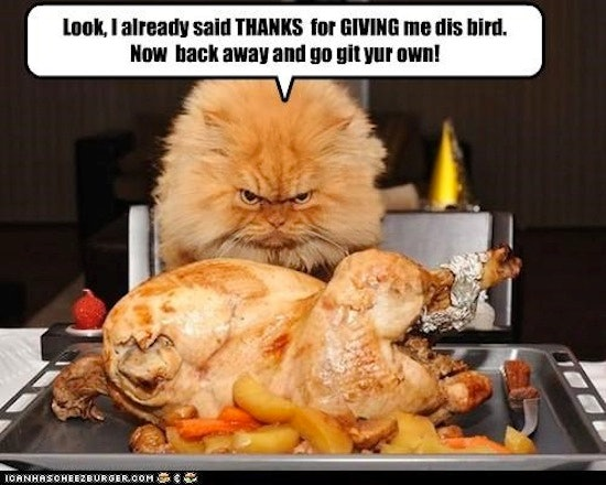 2cbf7a40 88ef 0134 ce2b 0aec1efe63a9 thanksgiving memes about family that resonate no matter how well