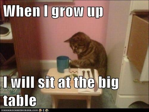 Funny Kid Friendly Cat Memes : Super duper cute and funny kitty memes sayingimages