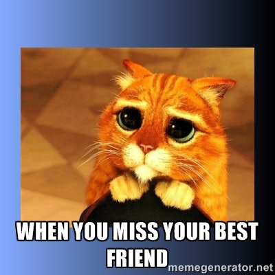 12 Best Friend Memes For National Best Friends Day 2016