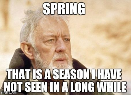 15 Funny Spring Memes To Get You Through These Chilly Spring Days