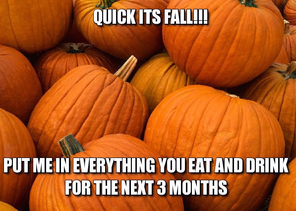 c0c8c090 3a28 0133 0a20 0e76e5725d9d 14 fall memes so you can usher in the greatest season of them all