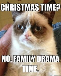 c5592480 a3e5 0134 ce84 0aec1efe63a9 holiday family memes for 2016 that are so relatable it almost hurts