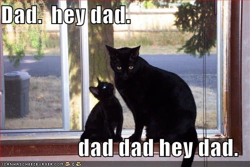Funny Memes For Dads : 14 father's day memes to make you laugh out loud as you celebrate