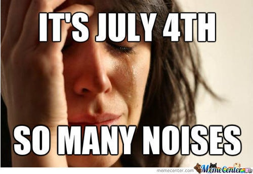 dbc3f390 2092 0134 931b 0ad17316e277 7 funny fourth of july memes, because america can be pretty