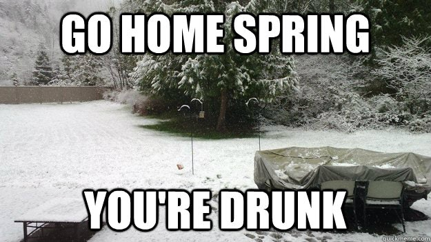 f5d861e0 cebb 0133 7371 0e8f20e97865 18 first day of spring memes so you can start the season off with