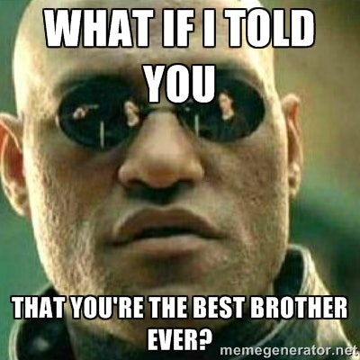 a6f2e3c0 e176 0133 af72 0e31b36aeb7f 8 funny brother memes for national sibling day that capture the