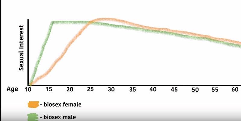 Compare male female libido sex drive
