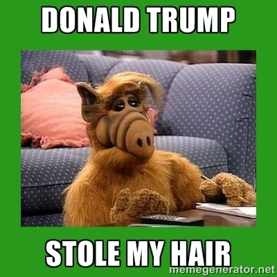 16 Donald Trump Hair Memes So Funny You Ll Actually Be Grateful