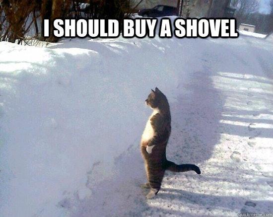 Image result for shoveling snow meme