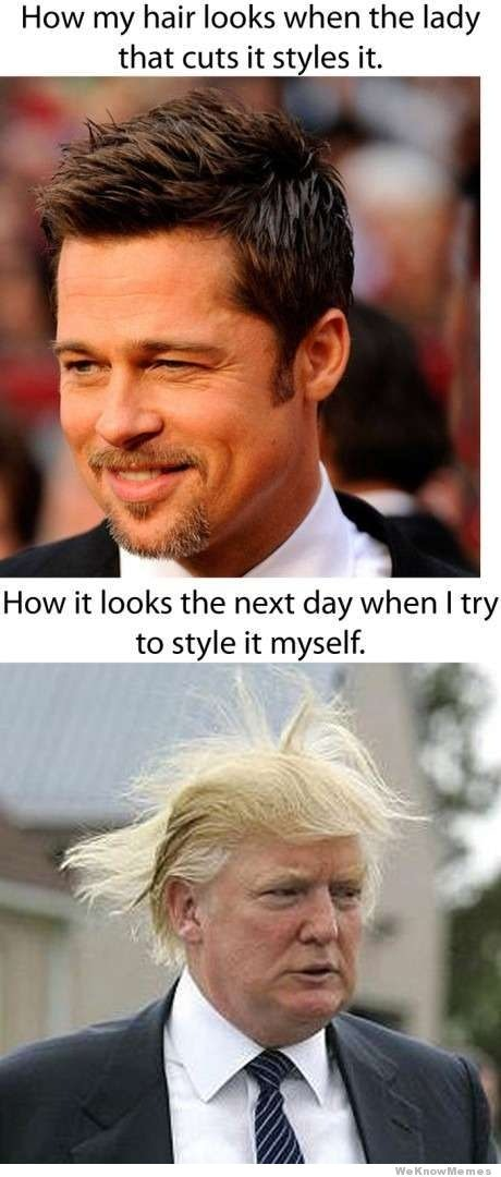 16 Donald Trump Hair Memes So Funny You Ll Actually Be Grateful He S