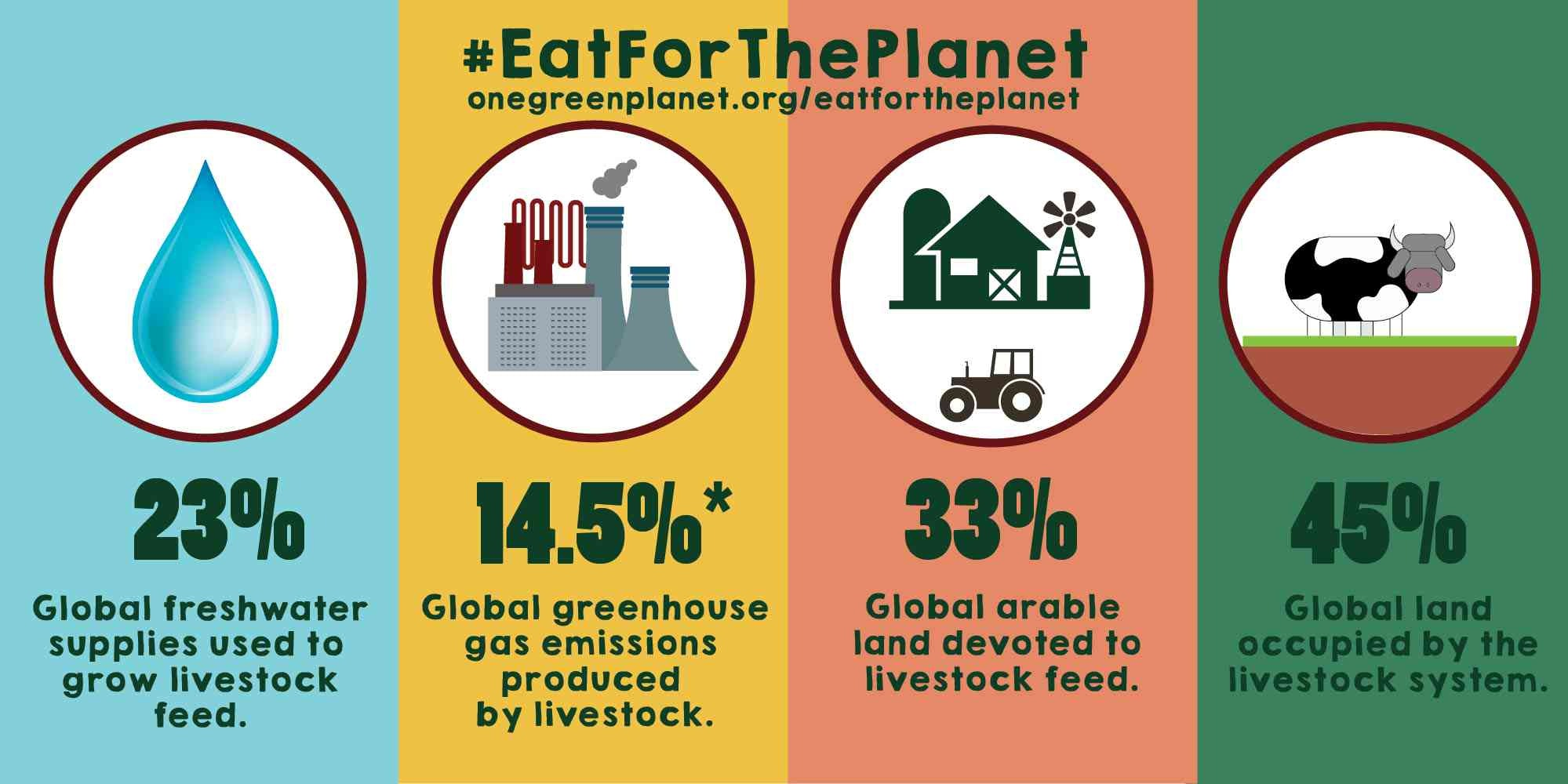 Image result for decreasing meat consumption is good for the planet