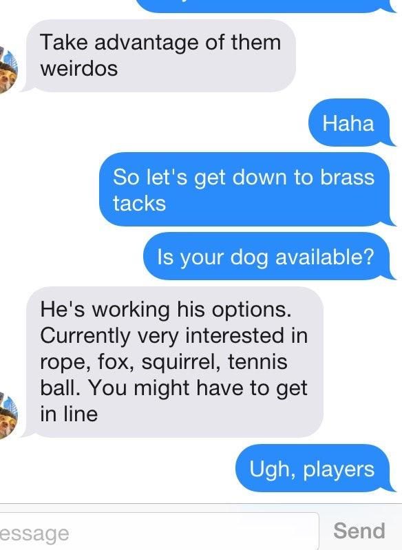 braås dating app