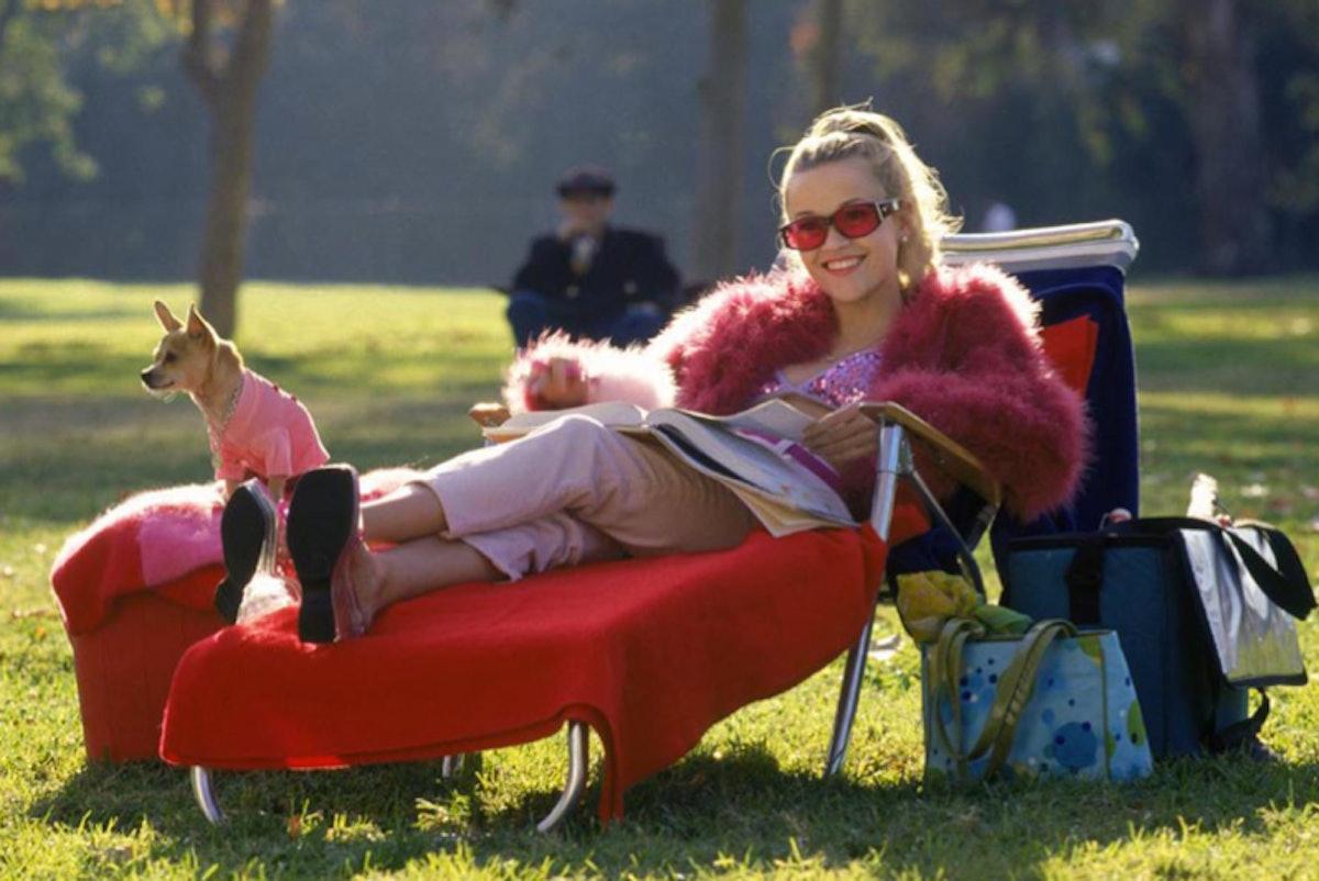 Legally Blonde Movie Emmett 'Legally Blonde's Elle...