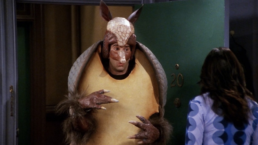 11 Reasons Why The Holiday Armadillo Should Be Incorporated Into ...