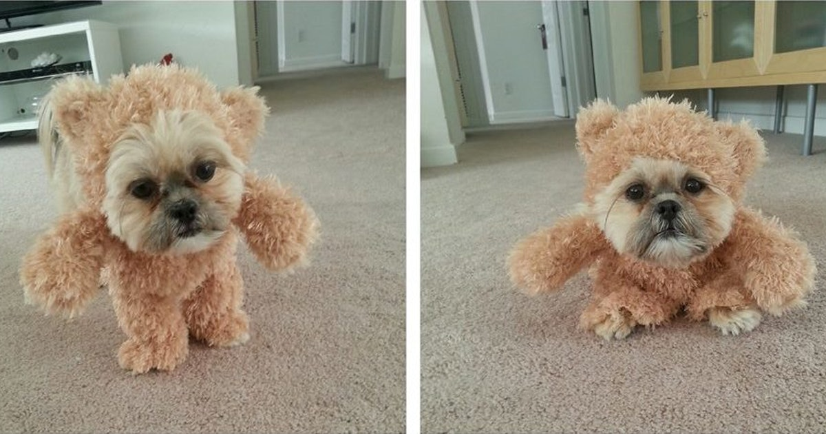 S Dog Stuffed Animal That Talked