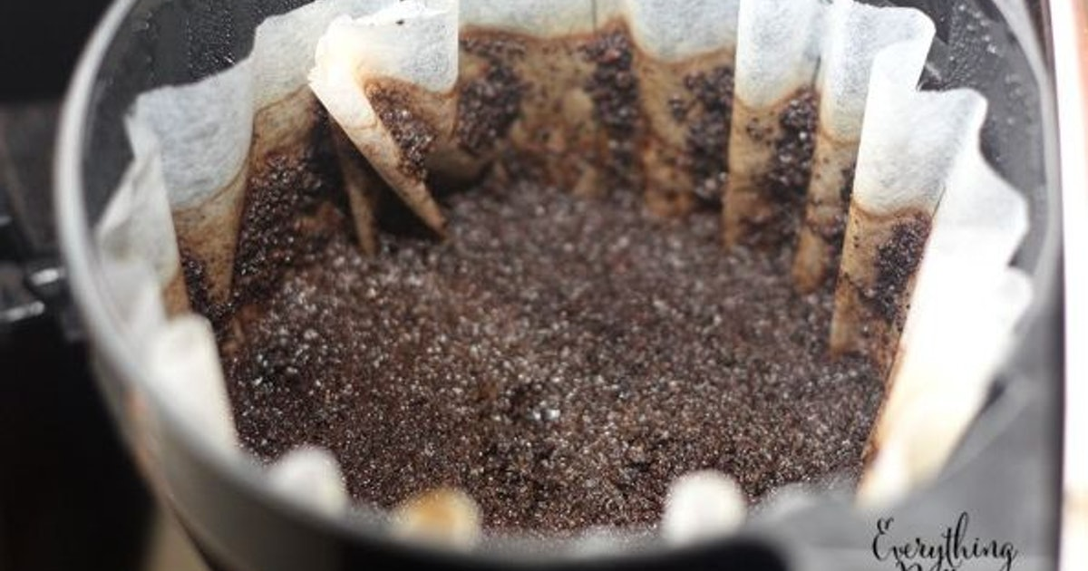 7 ways to reuse your coffee grounds for national coffee day - Coffee grounds six practical ways to reuse them ...