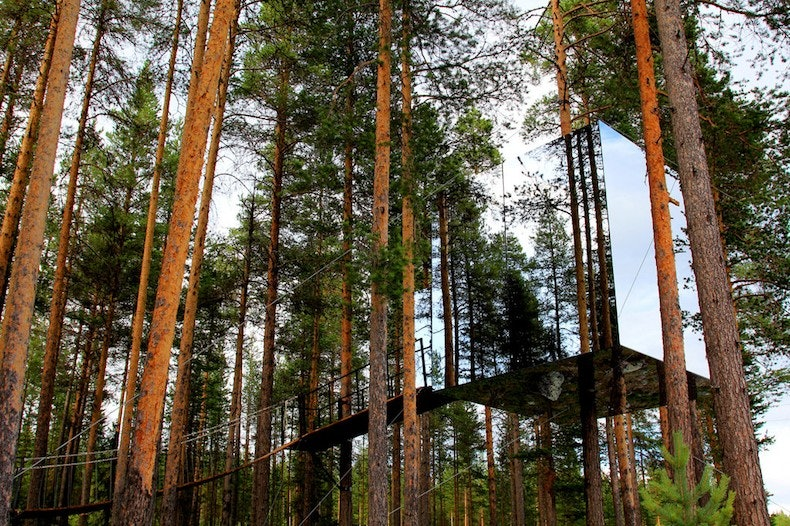 Perfect Coolest Treehouse In The World Nothofagus Hotel And