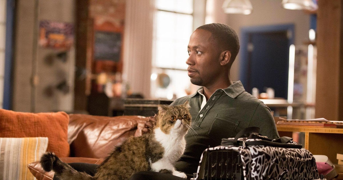 What Kind Of Cat Is Ferguson In New Girl