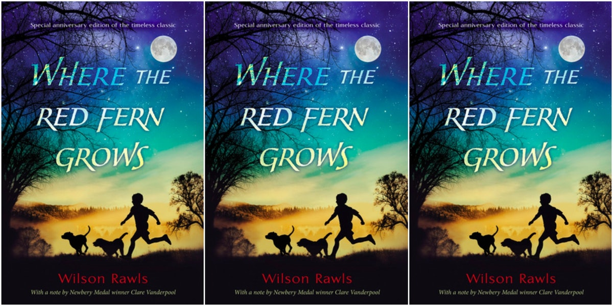 an analysis of the story where the red fern grows by wilson rawls Red fern wilson wilson rawls the story is about old dan and little ann, two coonhounds bought by billy when they were tiny puppies let us find you another essay on topic where the red fern grows by wilson rawls for free.