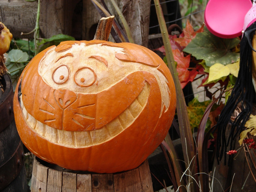14 awesome literary pumpkin carving and decorating ideas to try out this halloween
