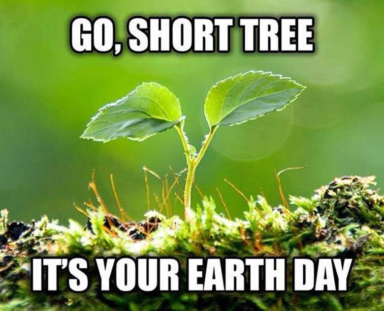 Image result for earth day memes