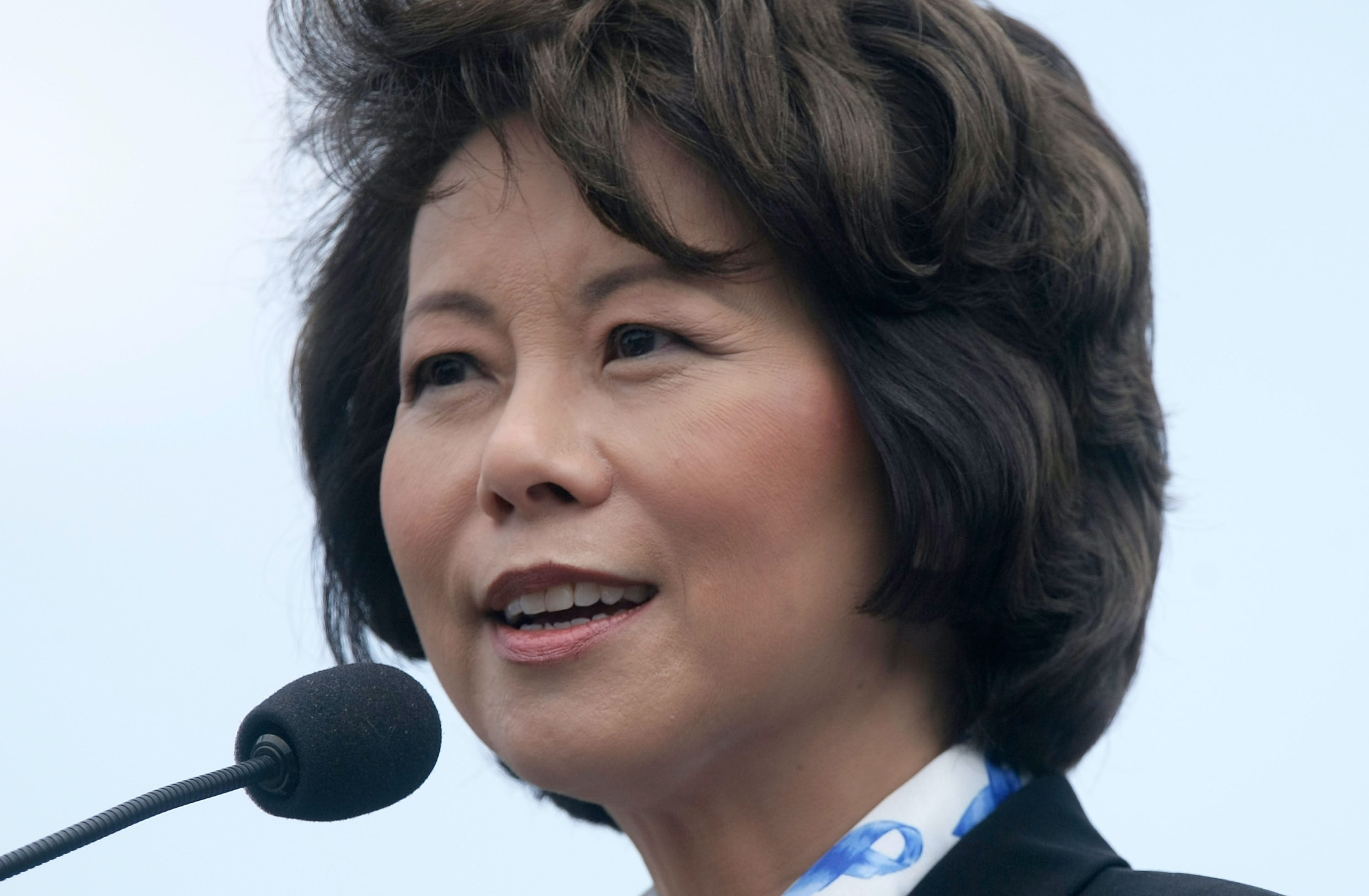 Donald Trump will reportedly choose Elaine Chao for secretary of transportation
