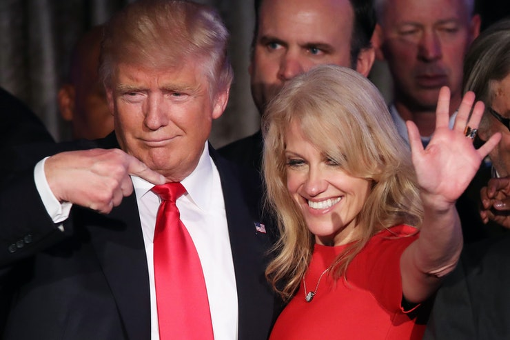 Kellyanne Conway first female campaign manager to successfully run presidential campaign