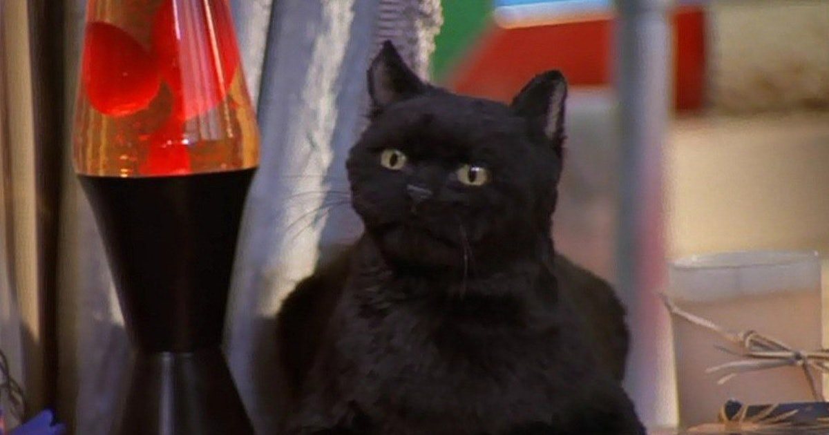 9 Reasons Salem From Sabrina The Teenage Witch Was The