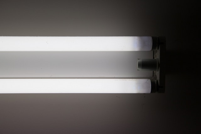 Is Fluorescent Light Bad For You? 3 Things You Should Know About The Common Office Lighting & Is Fluorescent Light Bad For You? 3 Things You Should Know About ... azcodes.com