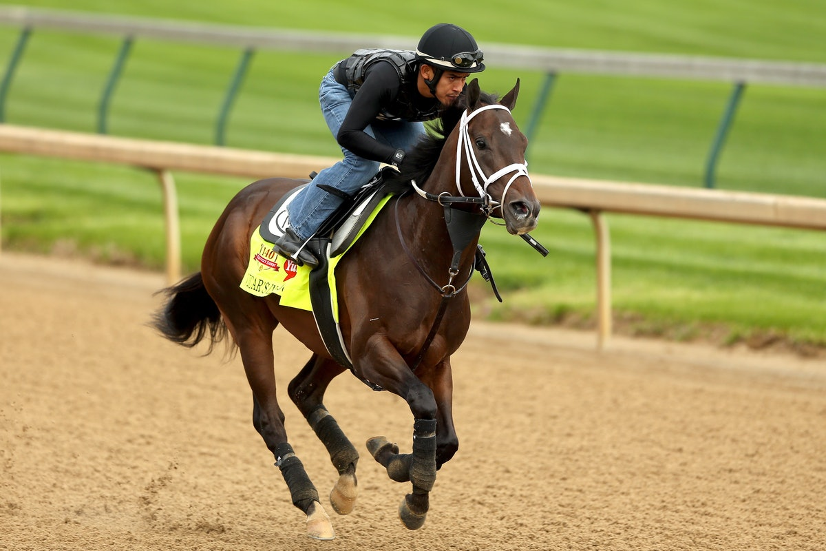Q Horse Names Kentucky Derby Horse N...