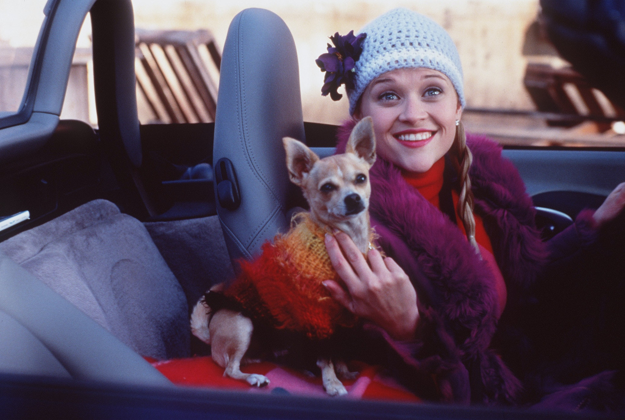 Legally Blonde Full Movie 38