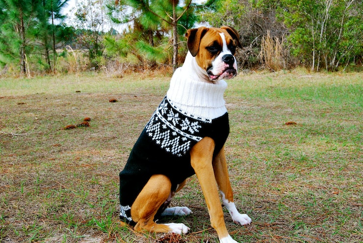 Dog Sweaters For Large Dogs Christmas