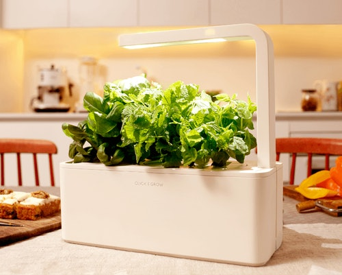 11 Smart Gardens For Your Apartment, Because Even Tiny Spaces Deserve Some Greenery