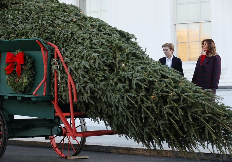 White House 2017 Christmas Decorations >> Video Of Melania Trump Welcoming The White House Christmas Tree Is Weirdly Timed