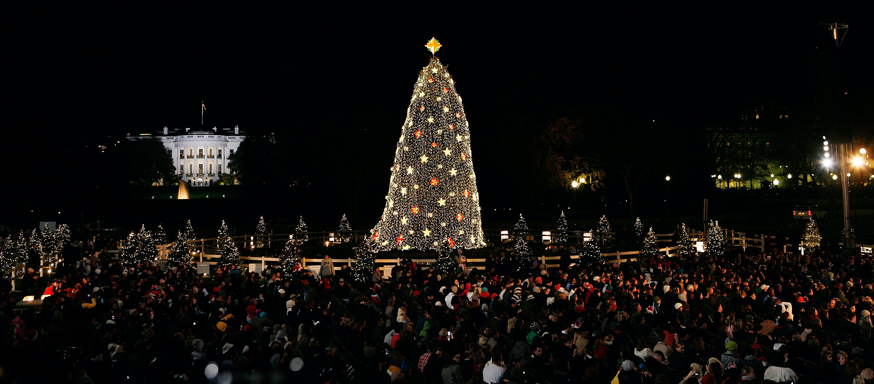 How To Watch The National Christmas Tree Lighting If You Donu0027t Plan On Being In D.C. & How To Watch The National Christmas Tree Lighting If You Donu0027t ... azcodes.com