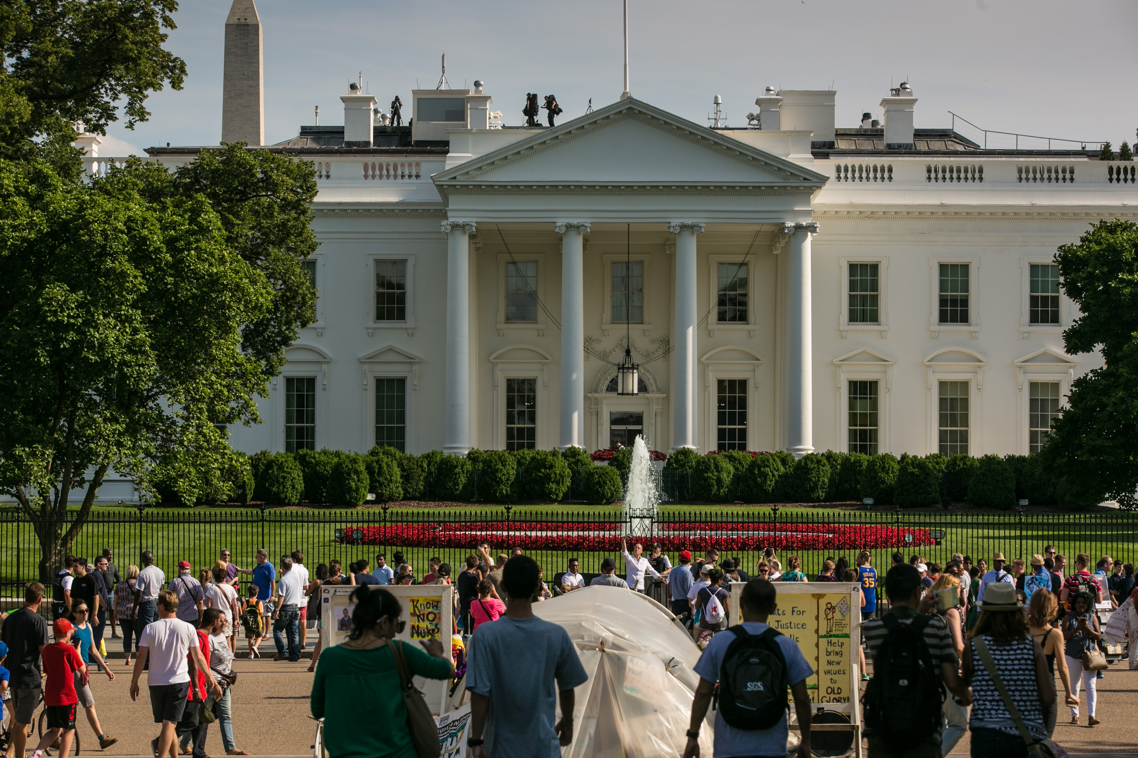 Iconic White House Trees to Be Removed