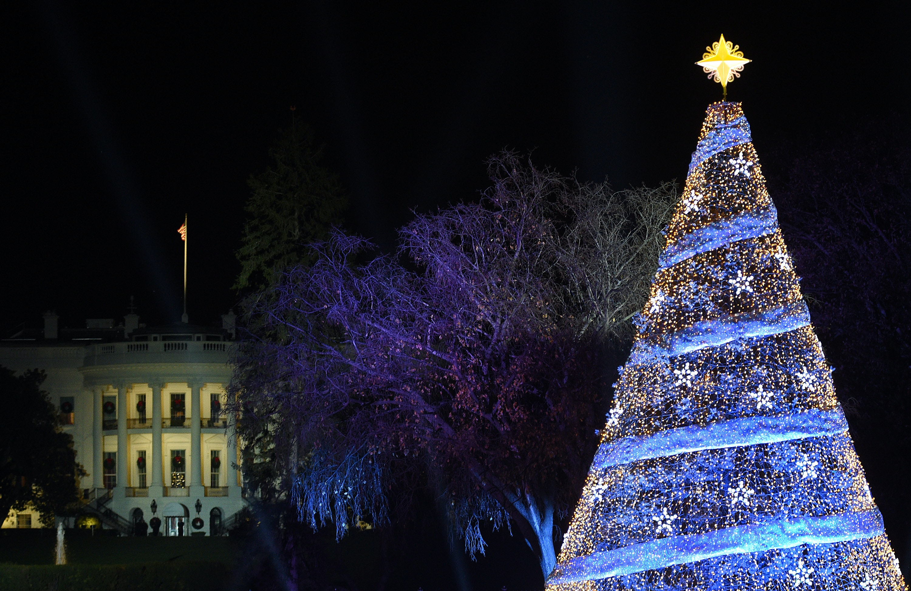 Photos Of Trump's National Christmas Tree Are Truly Majestic