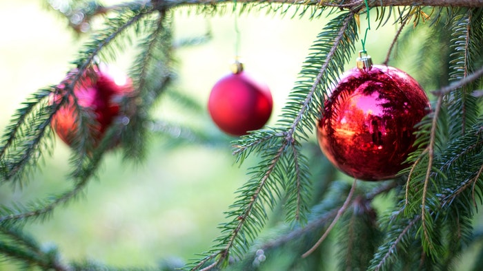 How To Tell If Your Baby Is Allergic To Christmas Trees, According ...