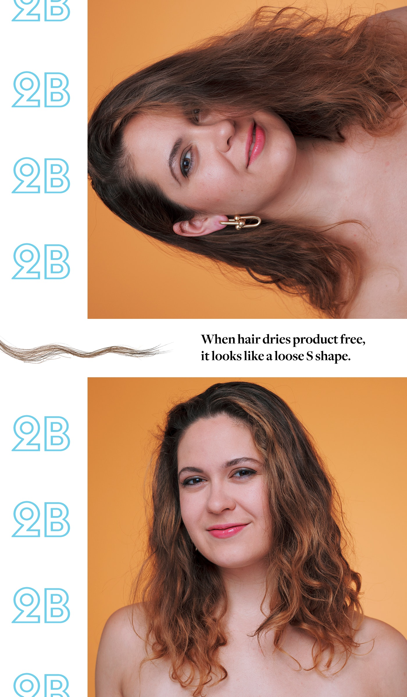 Natural Hair Curl Pattern New Decorating Ideas
