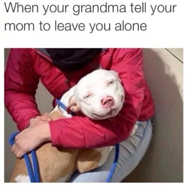 Grandparents Day Memes For 2017 Because Nobody Gets You