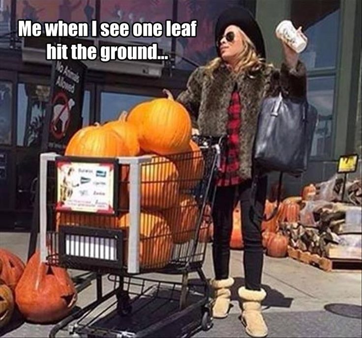 8ea0e5bd 3a74 49e5 a9ed 21c7b5c03212 a024f6820a93e32e99ce95b653269561 fall things fall pumpkins fall memes for 2017 that will get you in the pumpkin spice latte