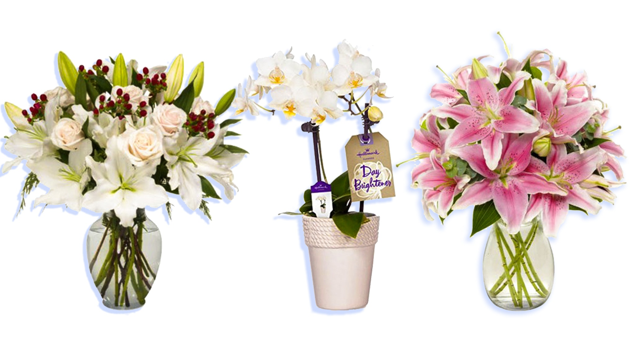 The 7 best flower bouquets on amazon for your girlfriend reviewsmspy