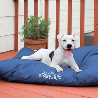 The 9 Best Dog Beds