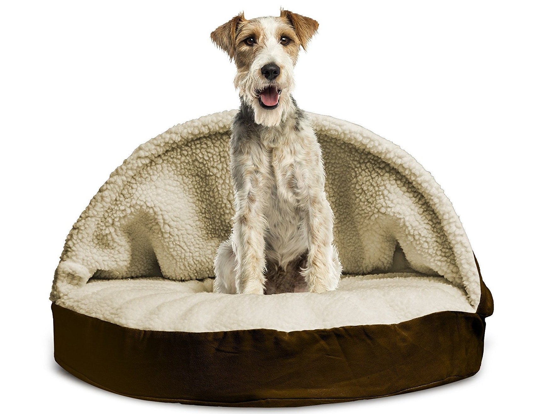 for pups the indestructible bed proof naughty those dog chew best